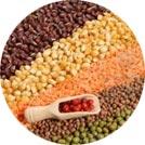 Cereais e Farináceos (73)